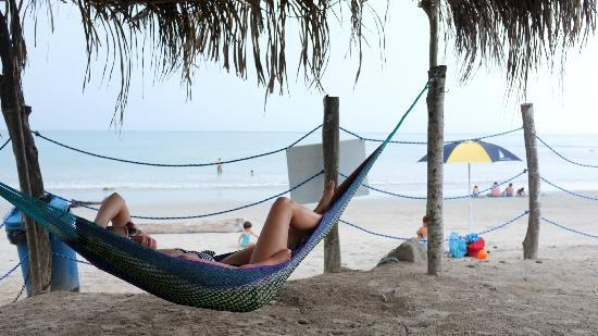 Hotel La Quinta del Sol: Beach - loved this hammock!!!