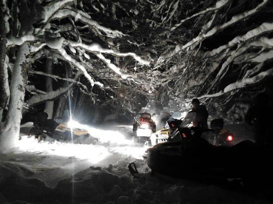 Province of Tierra del Fuego, Argentina: Hermoso! el bosque nevado de noche es increible