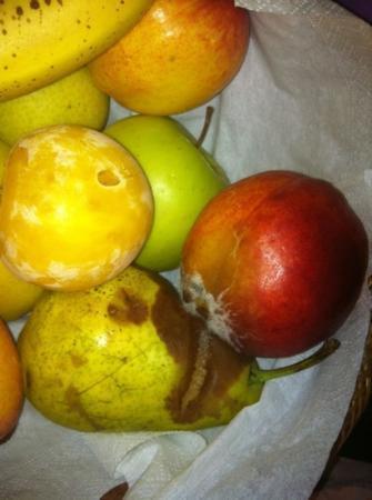 Grand Hotel in Porto Cervo: frutta che dopo 24 ora marciva dall'umidita'in stanza