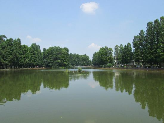 Besshonuma Park
