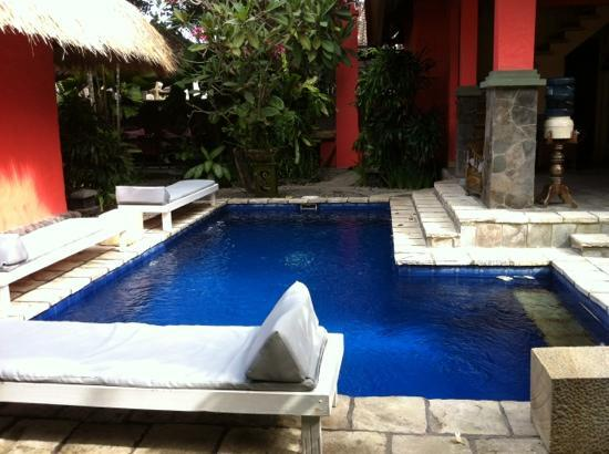 Flashback's: Swimming (plunge?) pool