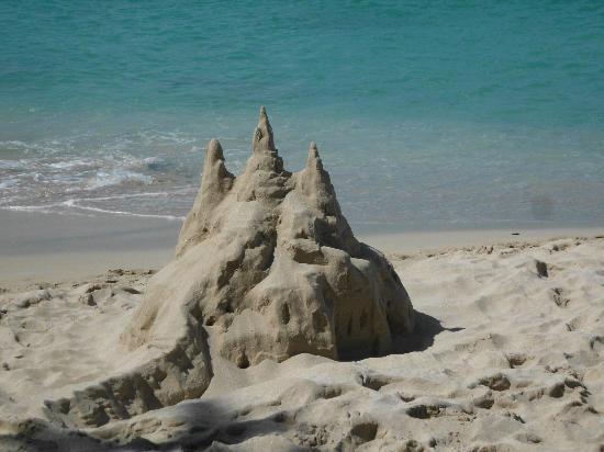 Sand Castle on the Beach: Sandcastle on the beach - literally