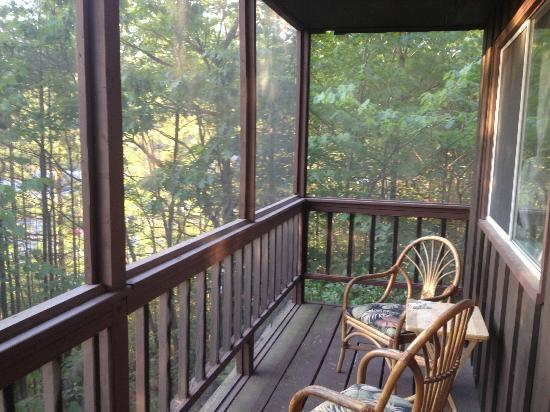 Glenn-Burney Lodge: Screened in porch off room