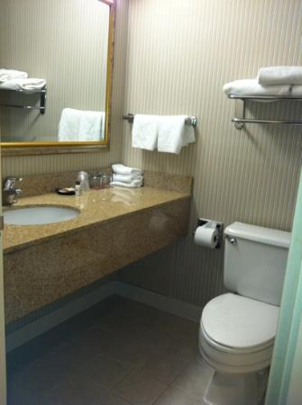 Sheraton Bucks County Hotel: bath room is small