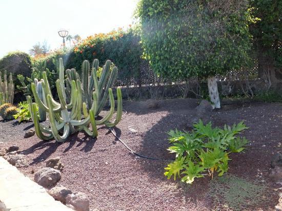 Santa Ana Villas: tuinen