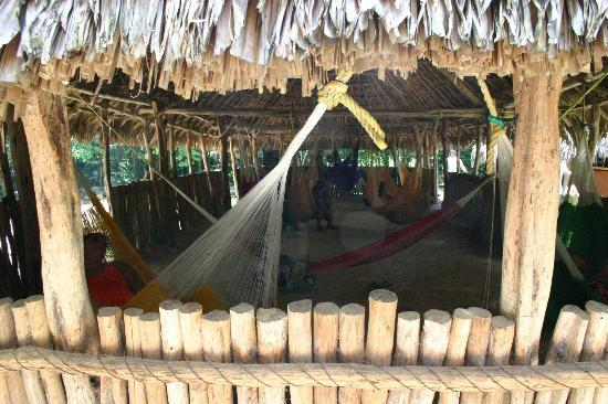 Casa Hamaca Guesthouse: X'Canche cenote hammock hangout