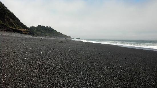 The Tides Inn of Shelter Cove: Black Sand Beach