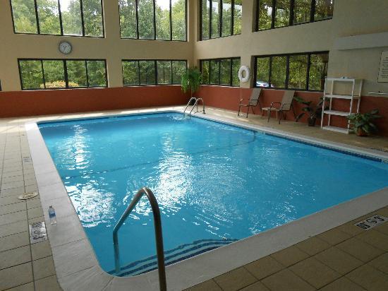 Best Western Delta Inn: Hotel Pool