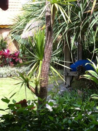 Desa Seni, A Village Resort: super relaxe la hutte dans la jungle 