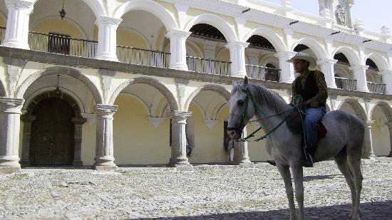 Banana Azul Hostel: Guatemalan cowboy in Antigua