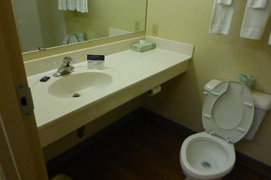 Extended Stay America - Pensacola - University Mall: sink