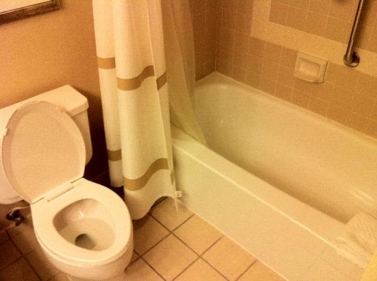 Houston Marriott South at Hobby Airport: bathroom