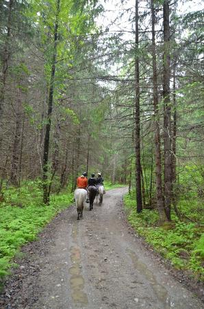Chilkoot Horseback Adventures