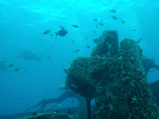 Diving Dominican Republic: A view looking up toward the surface.  Part of the Atlantic Princess Wreck