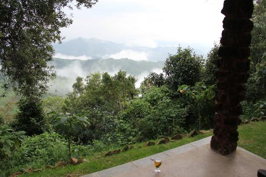 Clouds Mountain Gorilla Lodge: View from our room.
