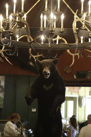 Tan-Tar-A Resort, Golf Club, Marina & Indoor Waterpark: Black Bear Restaurant