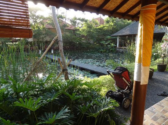 Green Field Hotel and Bungalows: Vue de la villa lotus