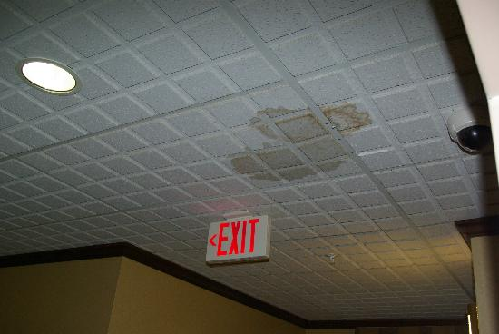 Holiday Inn Express Cleveland Airport - Brook Park: 1 of a number of water stained ceiling tiles not replaced in hotel