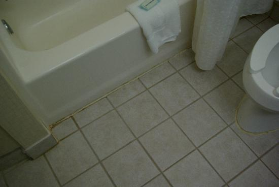 Holiday Inn Express Cleveland Airport - Brook Park: Old, dingy caulking in bathroom - should have been cut out and replaced!