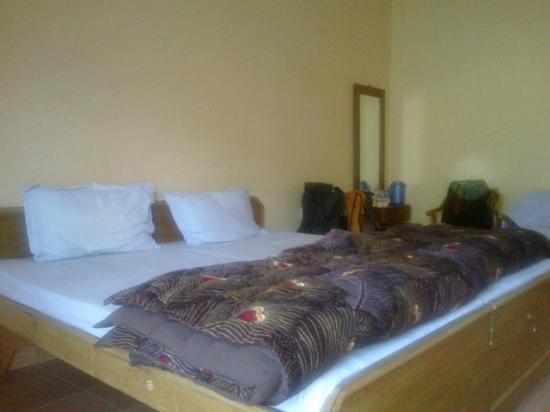 Guptkashi, India: Our Room