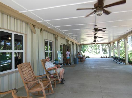 Charleston Tea Plantation: ICE TEA HEAVEN!
