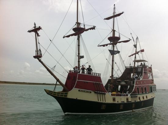Picture Of Osprey Cruises South Padre