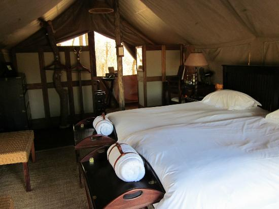 Rhino Walking Safaris at Plains Camp: Plains Camp Tent