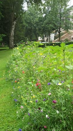 Nerotalanlagen: Gardeners created a little patch of Romantic wild flowers in the park, gorgeous