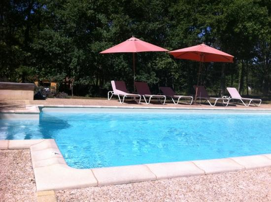 La Roche d'Esteil B&B: la piscine en plein après-midi : bonheur!