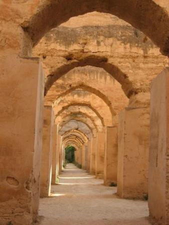 Medina de Mequinez: Horst stables at the Graneries of Moulay Ismail