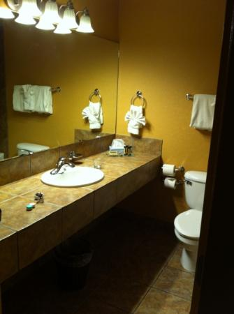 Prestige Inn Golden : nice bathroom - clean!!