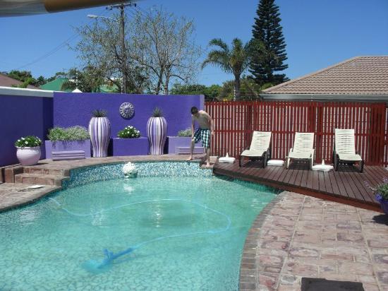 Bramlyn B&B: beautiful pool