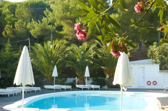Mandraki Village Boutique Hotel: Pretty grounds, flowers everywhere