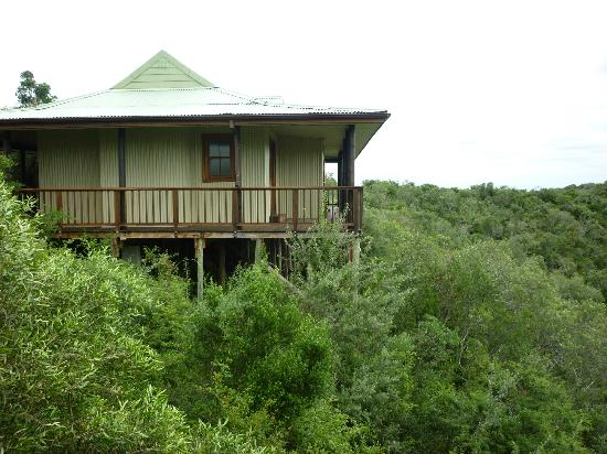 Camp Figtree: All that lodge just for two people!
