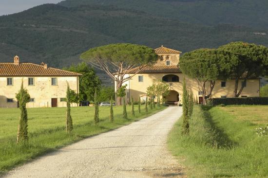 Photo of Le Terre dei Cavalieri Cortona