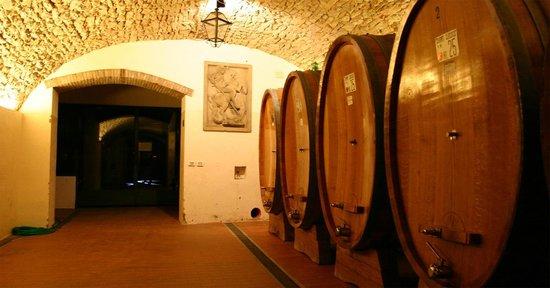 Dolce Chianti Wine Tours