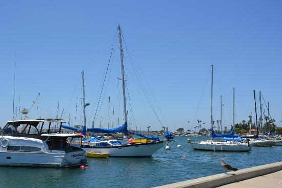 RK Hostel: San Diego`s Bay