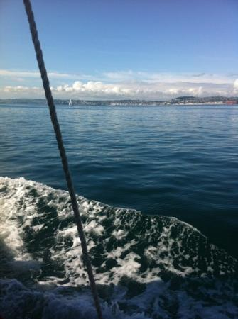 Greenway Ferry & River Boat Cruises : heading for Brixham