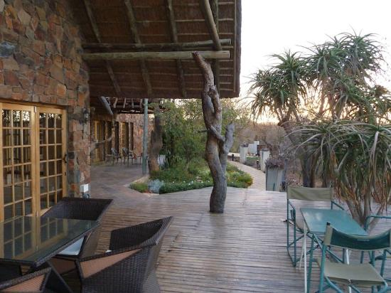 Mokolodi House: The Patio