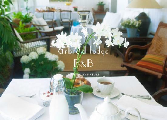 Arbre d'Lodge : Desayunos