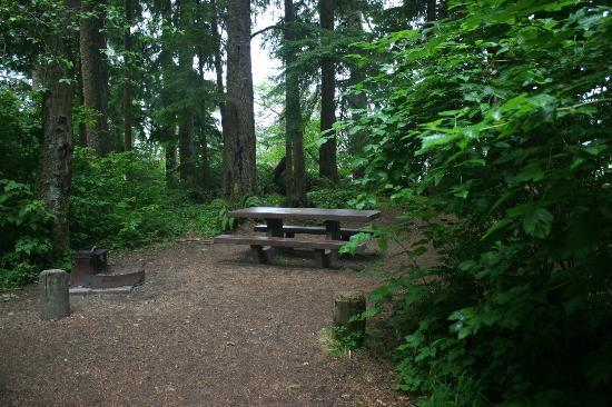 Mora Campground照片
