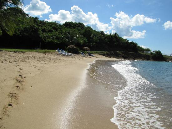 Hawksbill By Rex Resorts Honeymoon Cove Beach