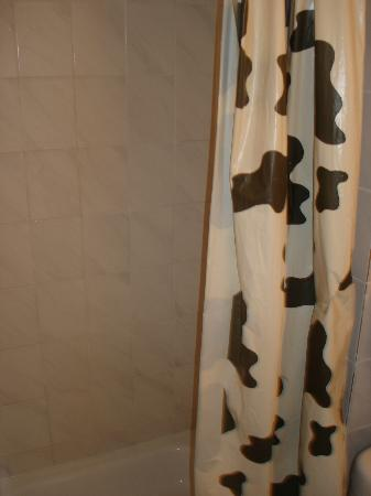 Hotel Beursstraat: Fashionable shower curtains that were dirty when we checked into the room