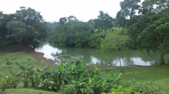 Dream Valley Jungle Lodge : la riviere