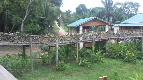 Dream Valley Jungle Lodge : vue arrivée