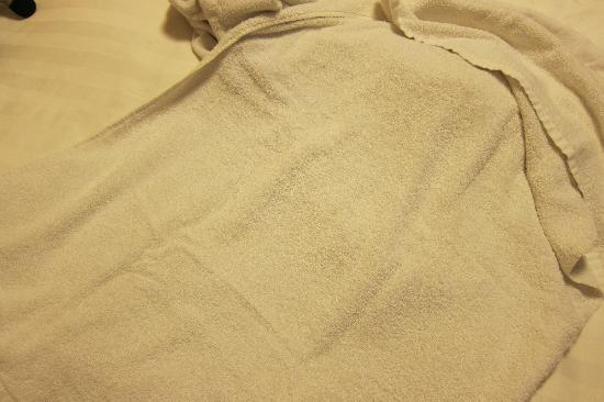 Somerset Palace Seoul: Huge Stain on Towel