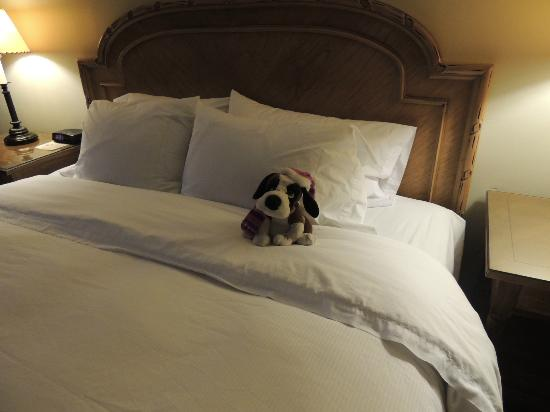 The Lodge at Riverside: Fluffy Puppies on the bed