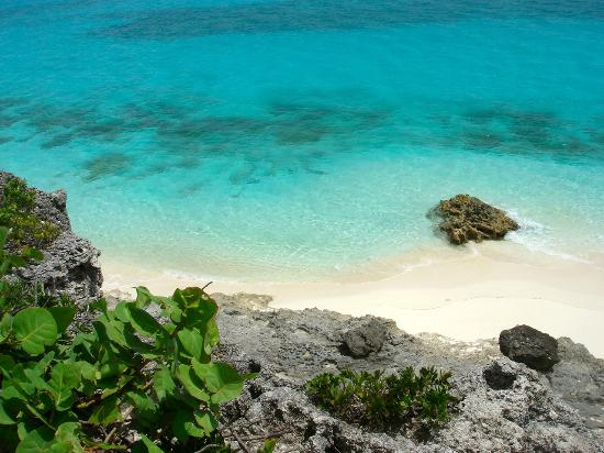 Paradise Bay Bahamas: Lagon