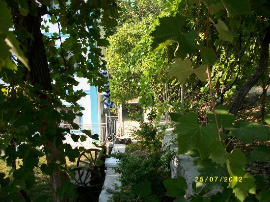 Villa Lapaz Breeze