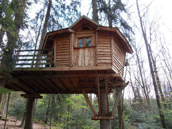 cabane dans les arbres picture of la ferme aventure la. Black Bedroom Furniture Sets. Home Design Ideas